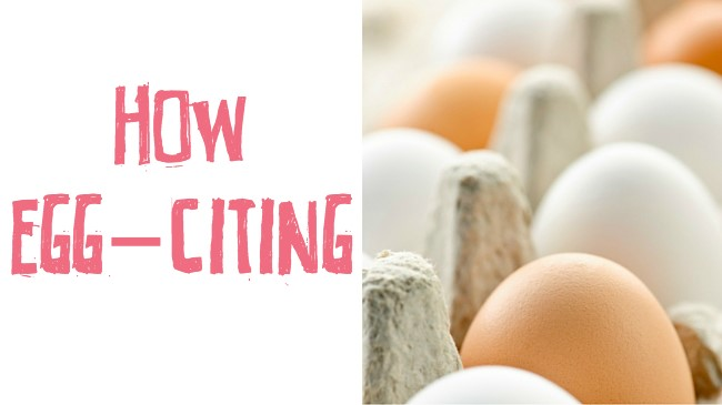 Why eating eggs is not as bad as you may have thought