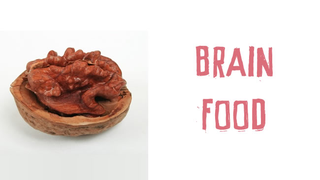 Foods that support brain function