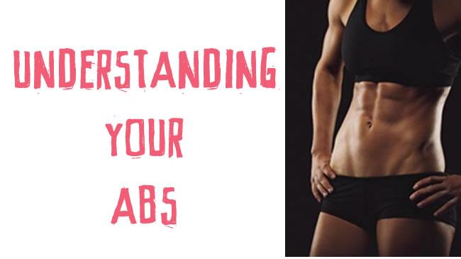 Understanding your abs