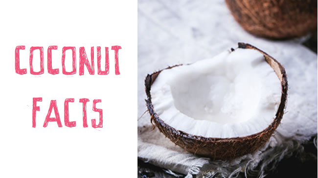 Nuts facts about coconuts!