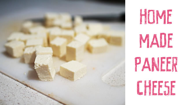 How to make your own paneer cheese
