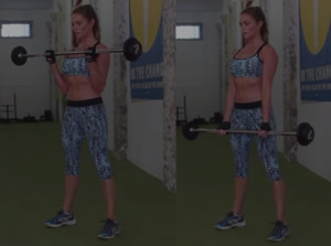 Barbell Biceps Curl